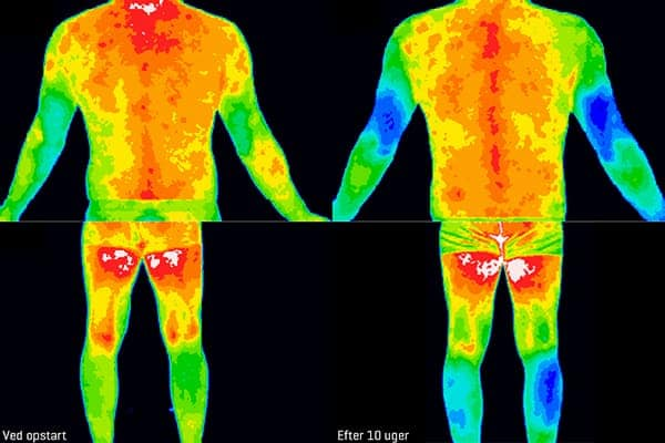 Thermografiske billeder af inflammation i kroppen før og efter forsøg