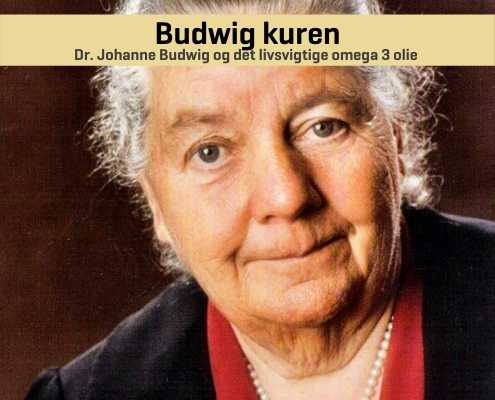 Budwig kuren af Dr. Johanna Budwig